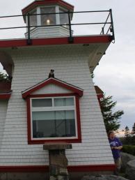 7 dr fox on the lighthouse