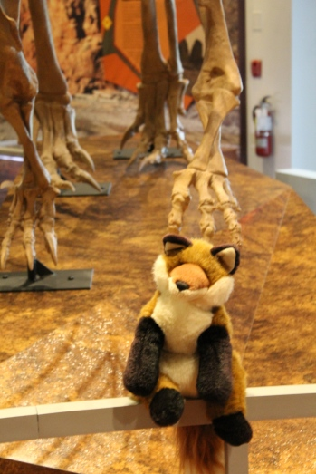 8 dr fox & dino