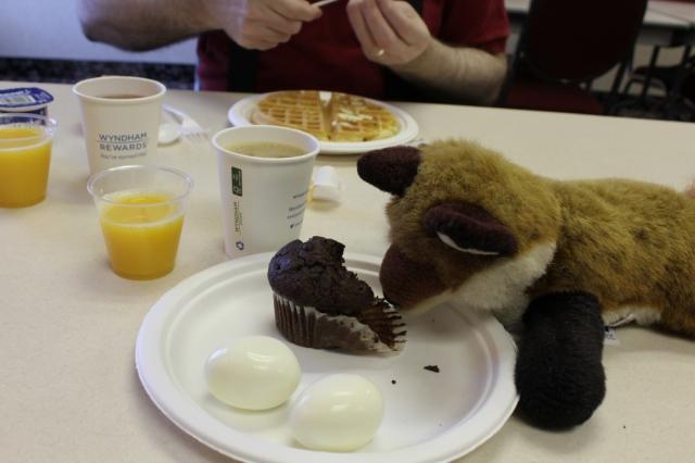 muffin fb